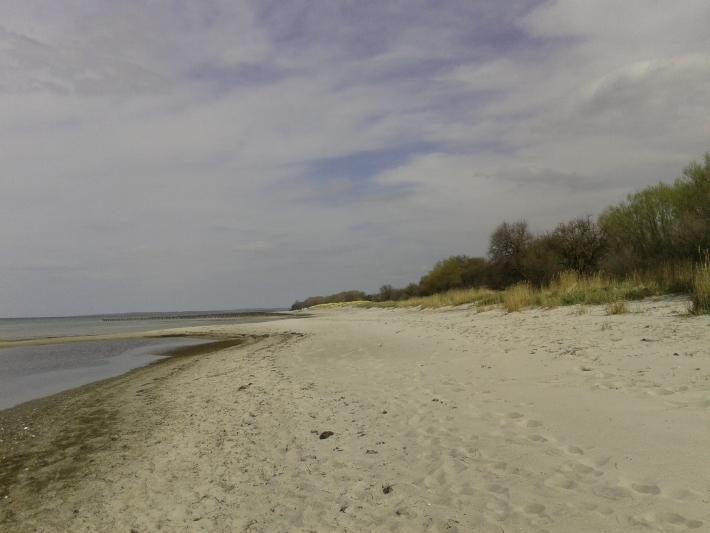 Ostseeklarde Ferienwohnung Meeresbrise Am Schwarzen Busch